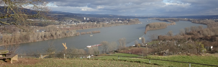 Goethe_Slide_Rheingau_860.jpg